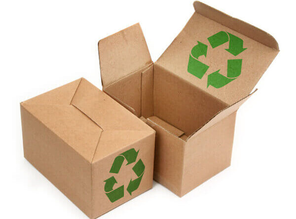 Best Ways to Stay Eco-Friendly While Moving